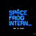 Space Frog Intern baslangic rehberi
