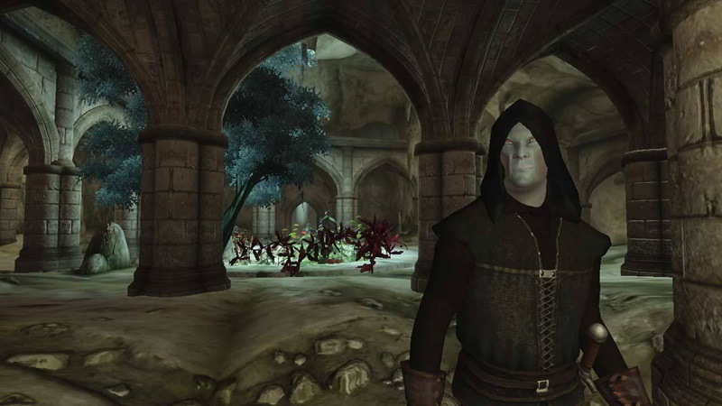 the elder scrolls oblivion