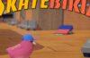 SkateBIRD baslangic rehberi